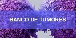 banner-b-tumores